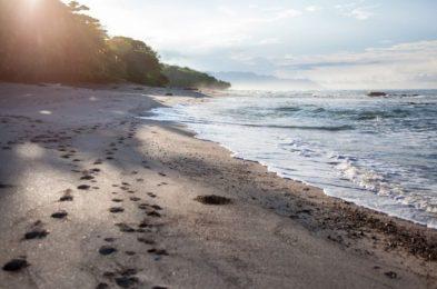 latitude-10-costa-rica-resort-rica