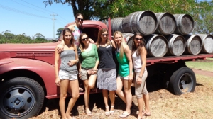 Swan Valley Winery & Brewery Half-Day Tour