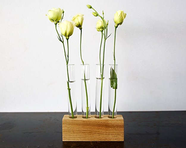 Test Tube Vase Moss + Twig