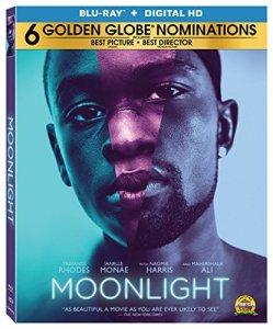 moonlight movie dvd