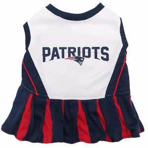 pets cheerleader outfit