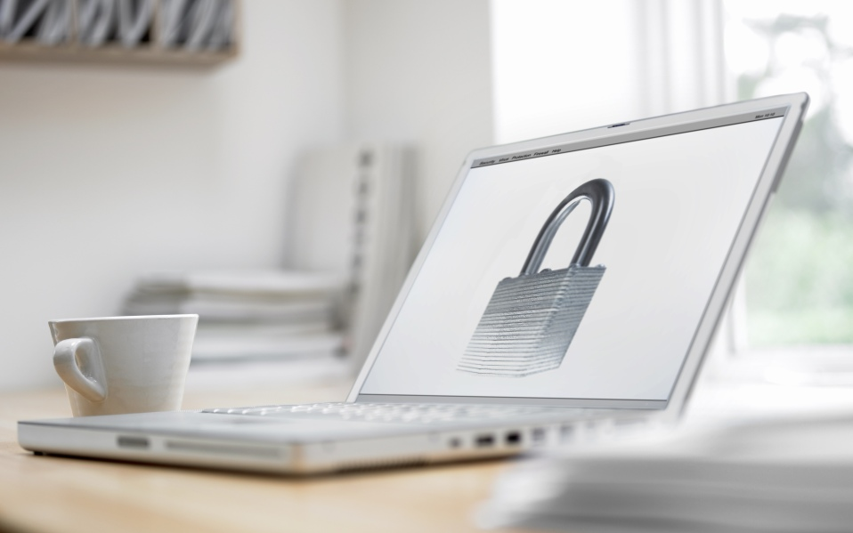 Online Privacy Tips for the New