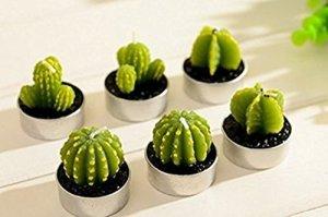 cactus tea light candles ornerx