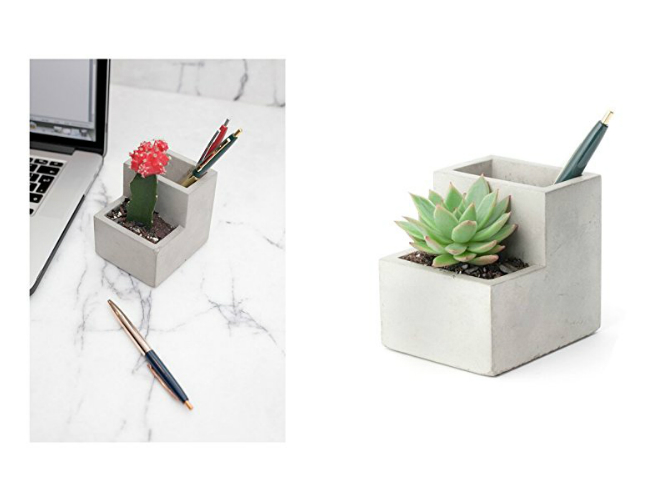 This Concrete Planter for Succulents is
