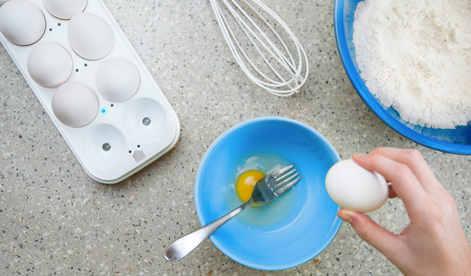 This Egg Tray by Quirky Tells