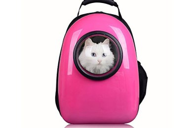 Pettom Pet Carrier Bubble Backpack