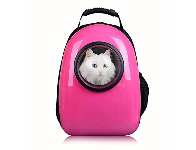 pet carrier bubble backpack Pettom