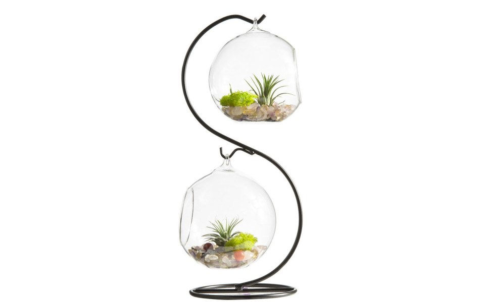glass terrarium Mkono