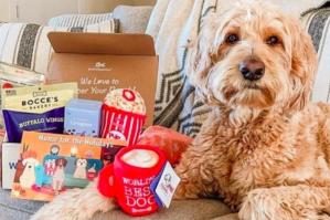 pooch perks premium customized dog box