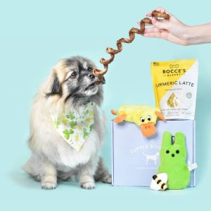 the dapper dog standard subscription box