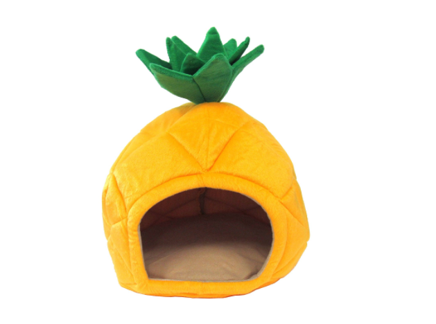 Pineapple Pet Bed