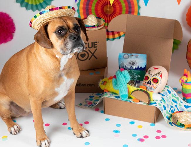 the animal rescue site subscription box