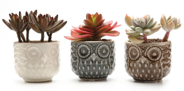 Ceramic Owl Pattern Succulent Plant Pot