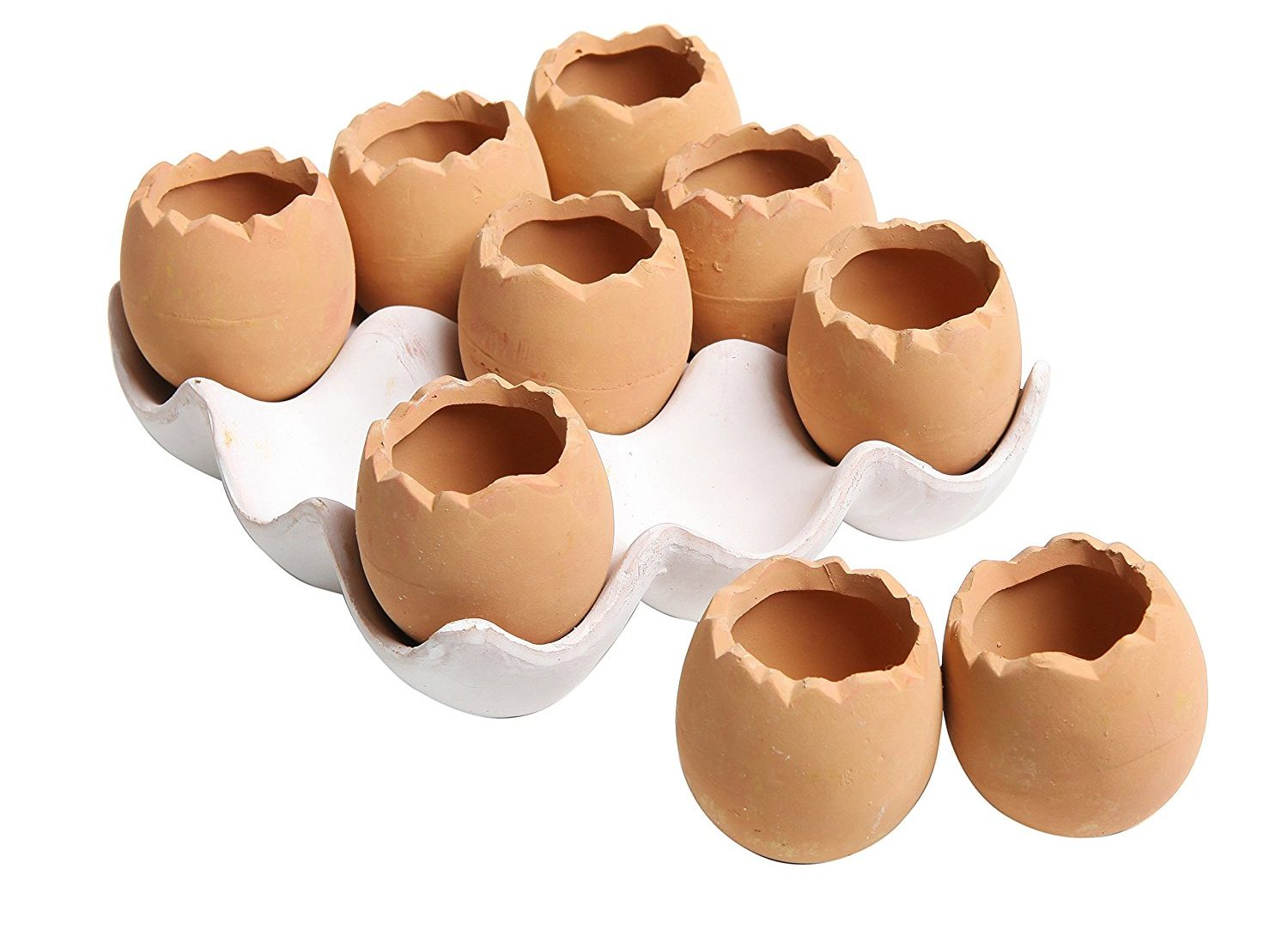 Set of 9 Brown Eggs Ceramic Succulent Planters with Tray