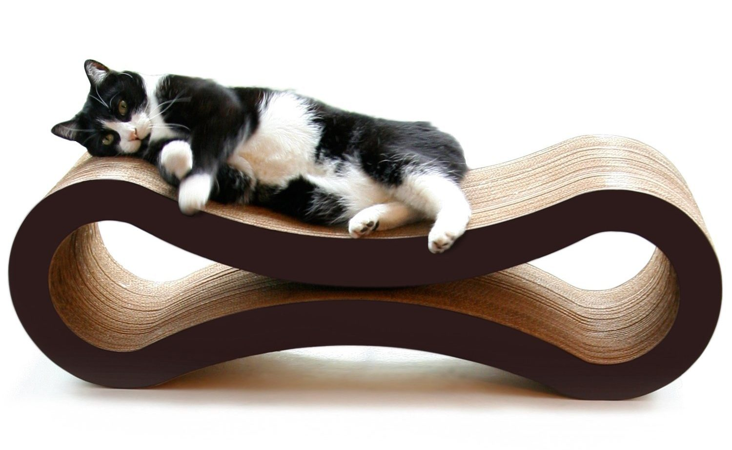 best cat furniture Amazon