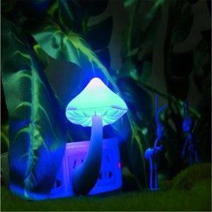 Small Night Light Mushroom
