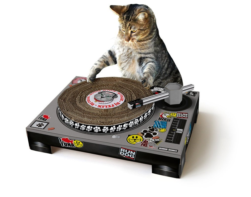 Crazy Items for Cats
