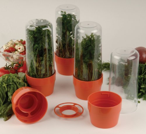 herb saver containers