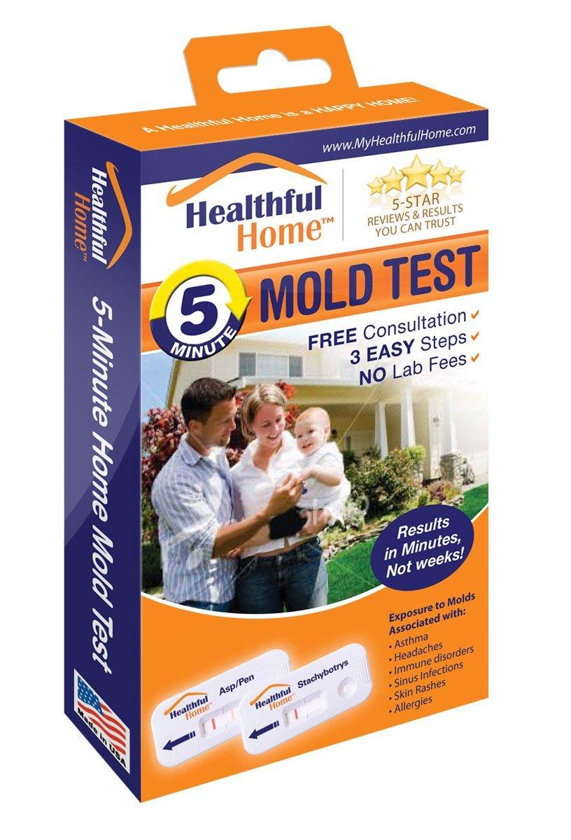 Indoor Mold Detector
