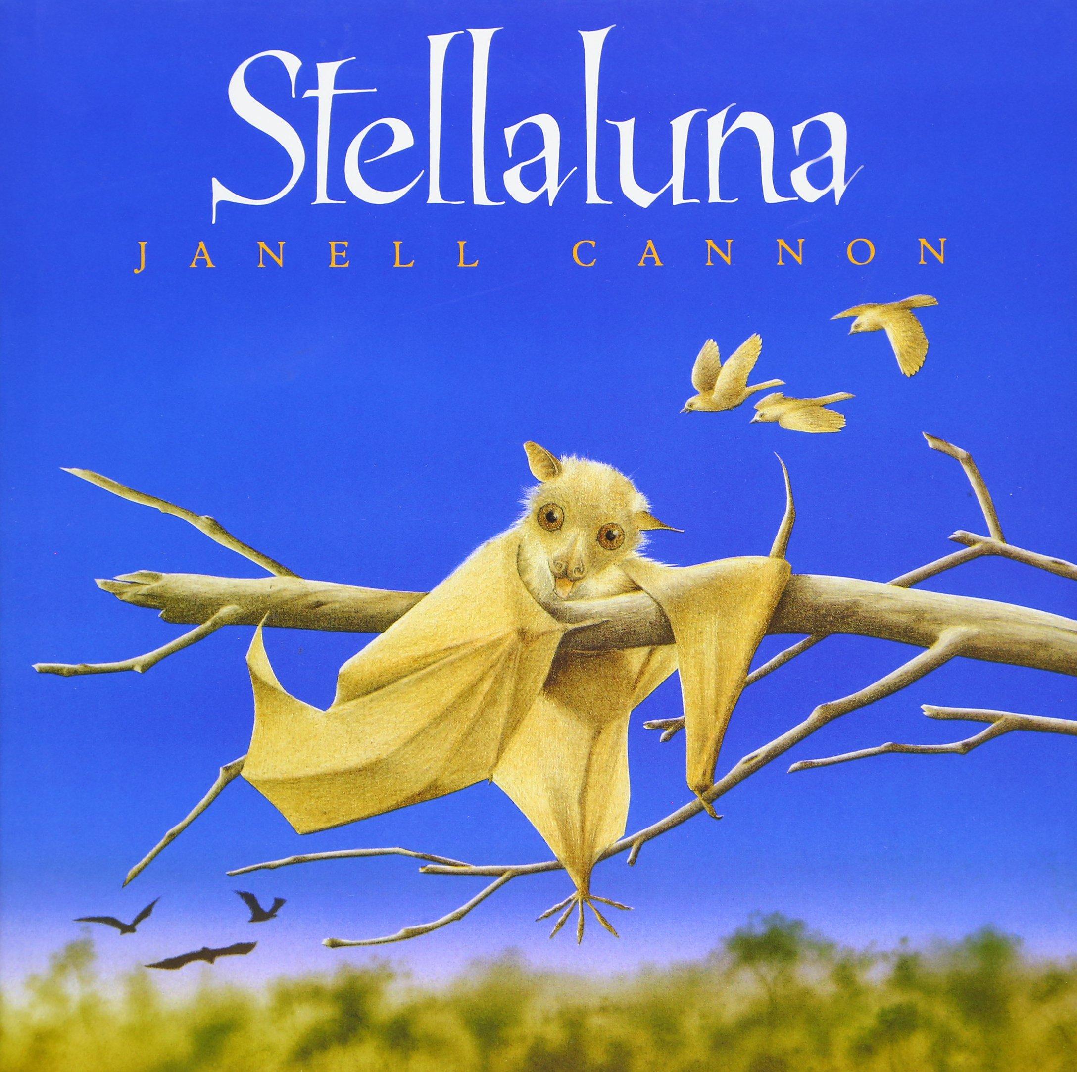 Stellaluna amazon