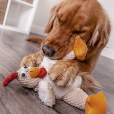 Best-Chew-Toys-for-Dogs