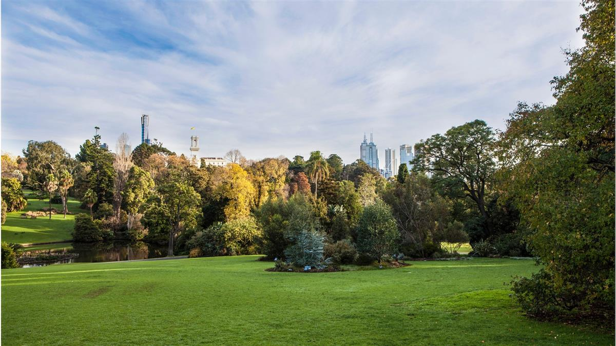 things to do in Melbourne Australia best attractions royal botanic gardens