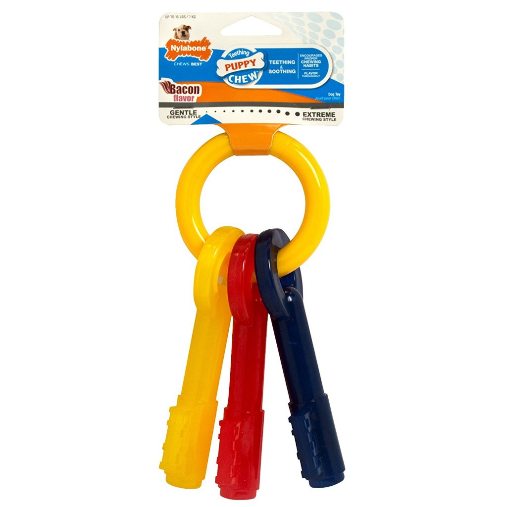 Nylabone Key Ring