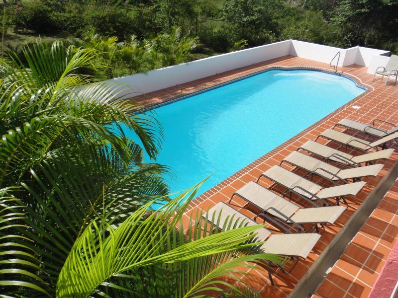 holiday rentals Tripadvisor best beach vacation homes Isla de Vieques Puerto Rico