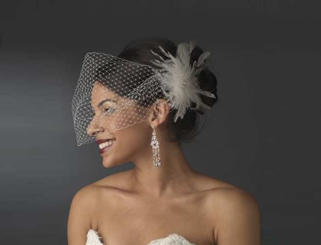 Net and Feather Cage Veil