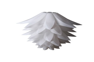 Lotus1365