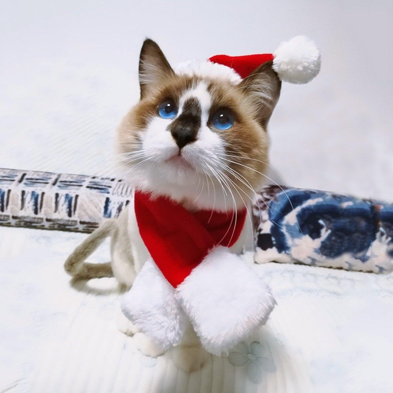 Santa's Hat and Muffler