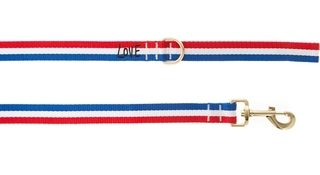 ED Ellen DeGeneres Love Stripe Dog Leash