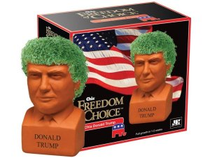 Trump Chia Kit