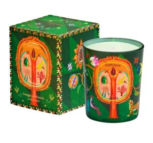 best Christmas candles diptyque
