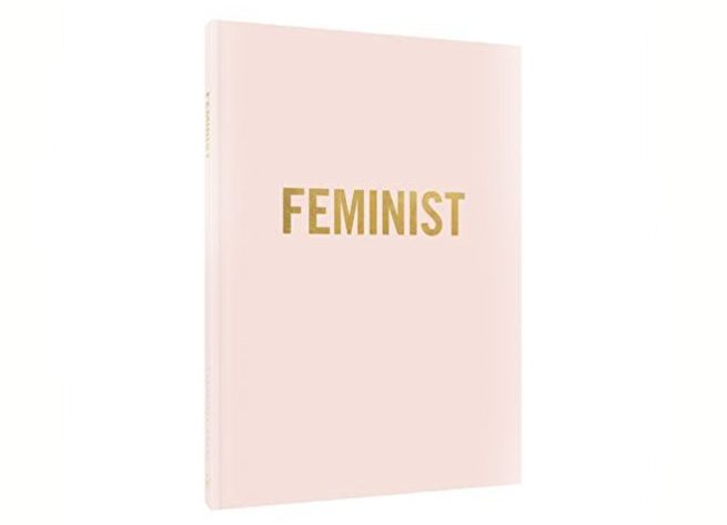 Feminists Journal Chronicle Books