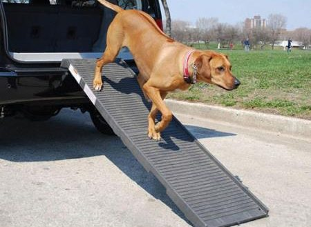 pet car ramp