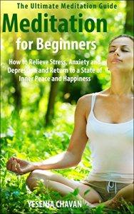 Meditation for Beginners by Yesena Chavan
