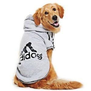 Adidog Hoodie East Lion