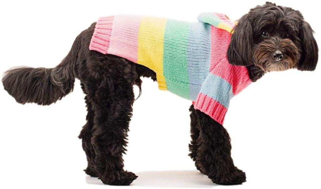 Stinky G Happy Stripes Hoodie Dog Sweater
