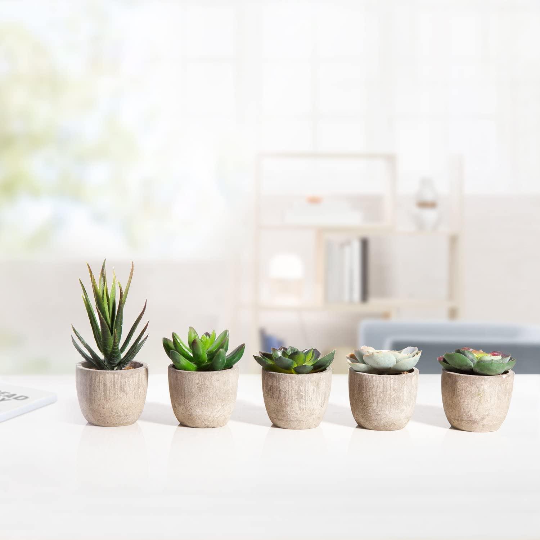 artificial succulents in pots