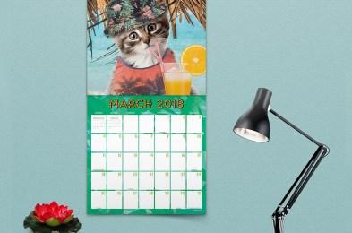 crazy-calendars-2018