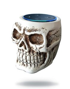 Alexa Cover Skull