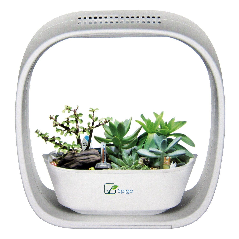 LED indoor plant planter amazon