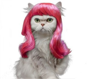 Drasawee Synthetic Cat Wig