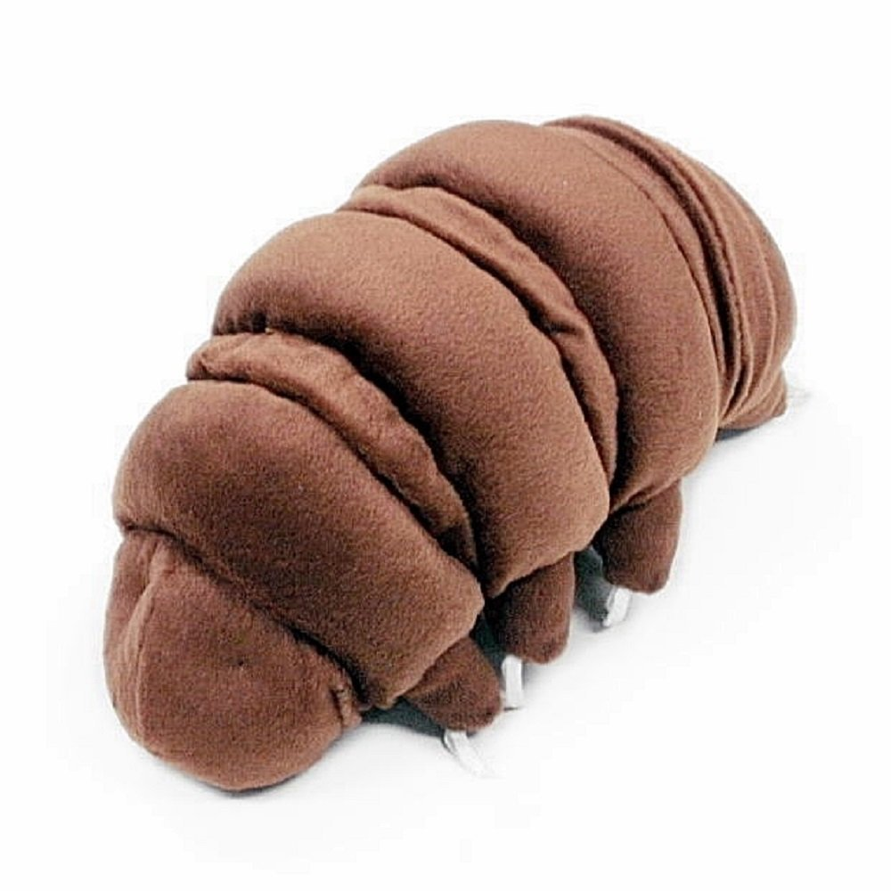 Brown water bear stuffed toy