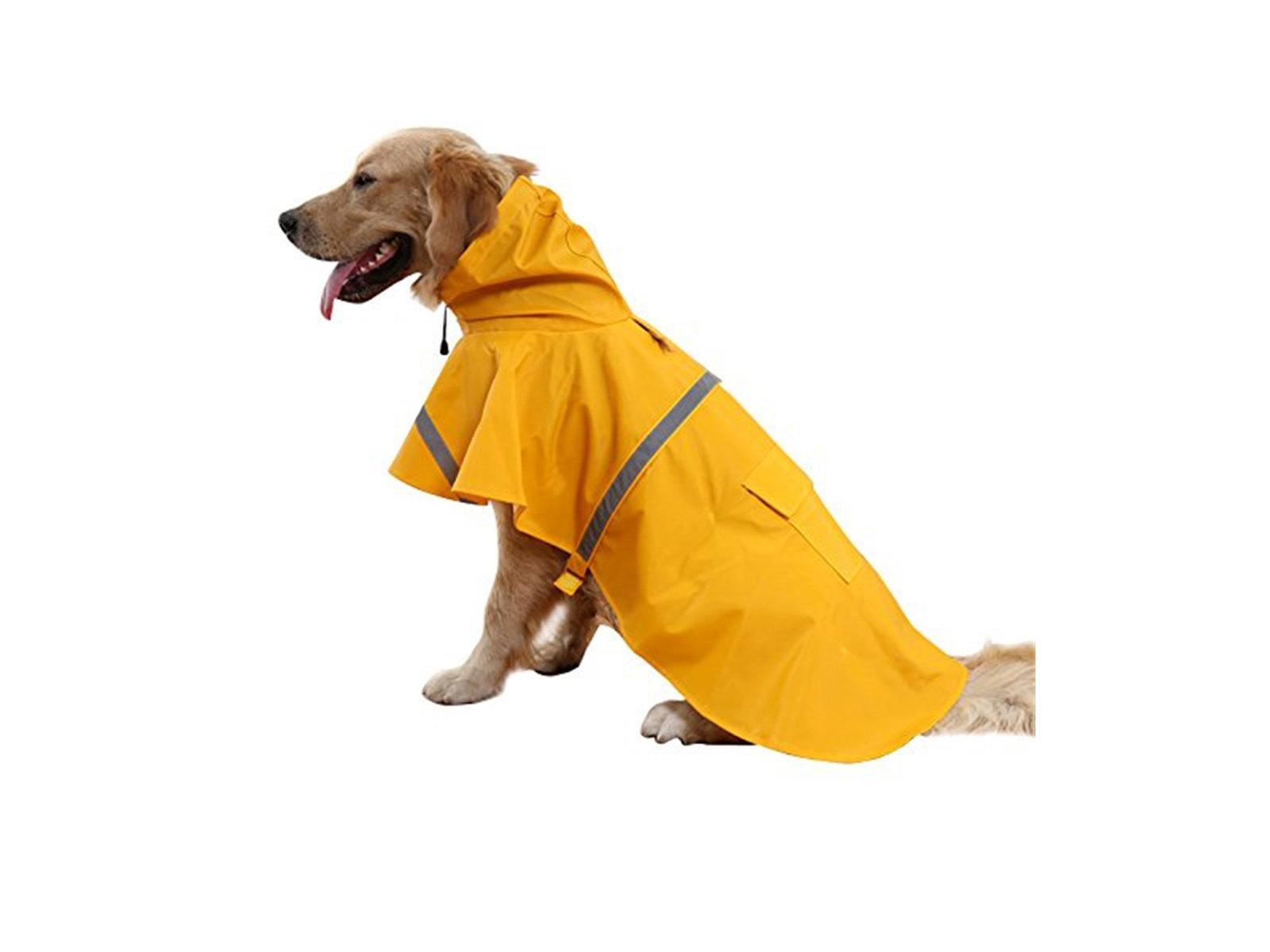 pet rain poncho amazon