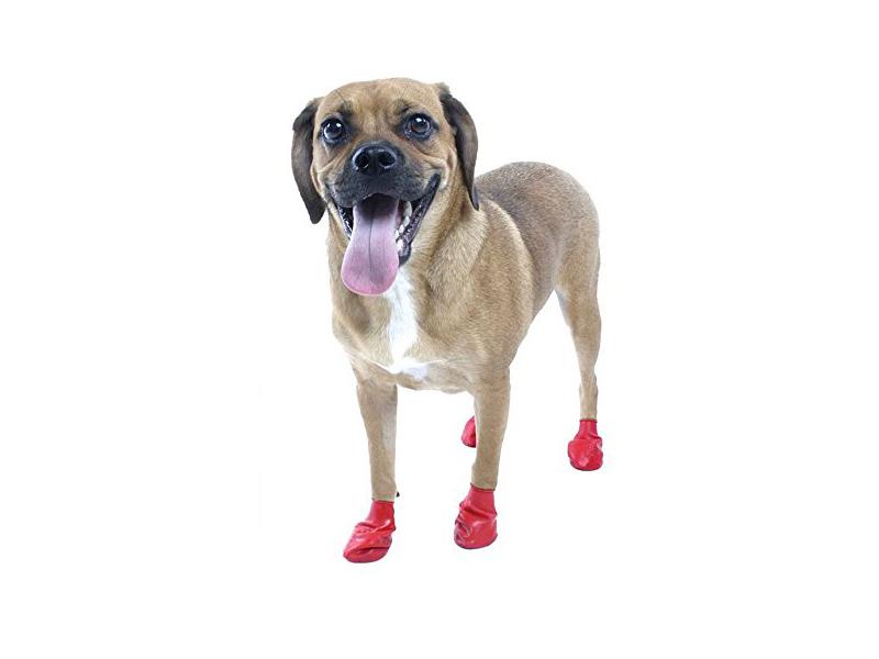 dog boots amazon