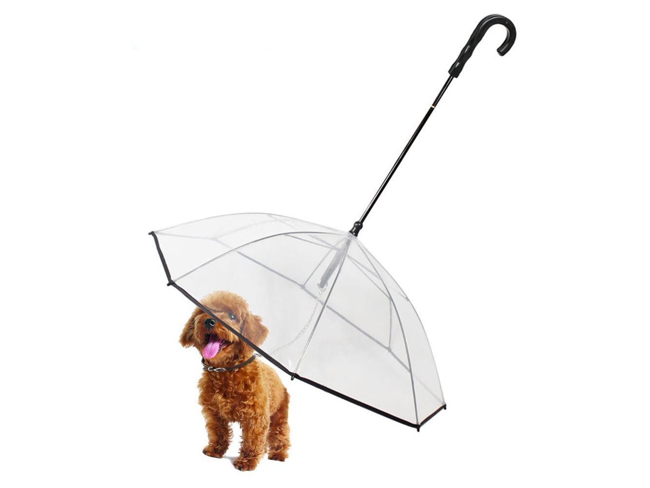 pet umbrella amazon