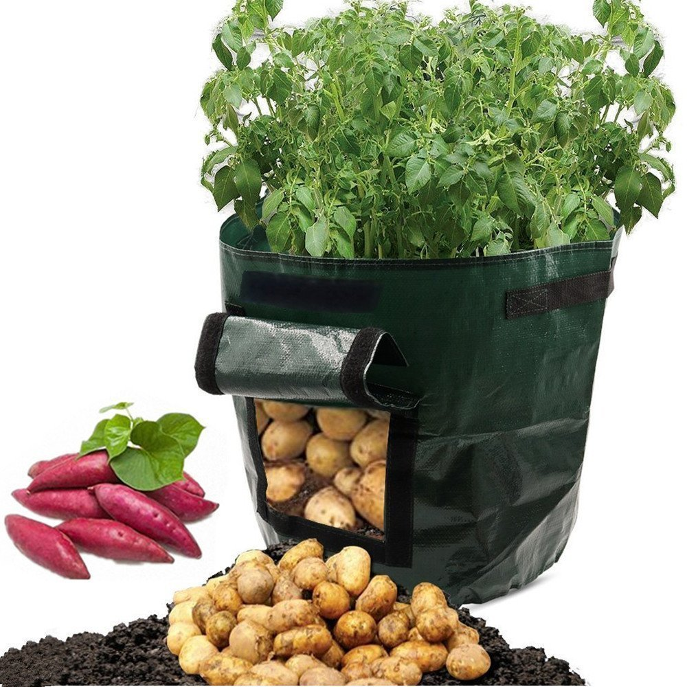 garden ideas small spaces growing 7 gallon vegetable growing bag carrots potatoes