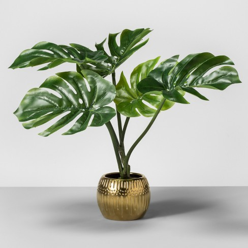target furniture favorites home decor collection opalhouse artificial palm plant in gold pot base leaf